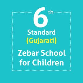 Standard 6 ZEBAR School For Children Textbooks & Notebook Set Optional Language Gujarati (Notebooks With Covering)